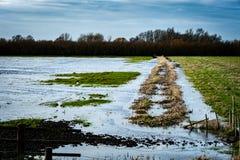 Inondazione e cielo di palude fotografia stock