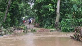 Inondazione, il Mekong, Cambogia video d archivio