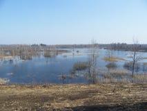 Inondazione in primavera Fotografia Stock Libera da Diritti