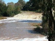Inondazione in Ramat Gan National Park Fotografie Stock
