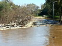 Inondazione in Ramat Gan National Park Fotografia Stock