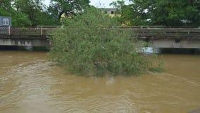 Inondazione rurale dell'azienda agricola che caratterizza la casa dell'azienda agricola, sui campi sommersi asciutti stock footage