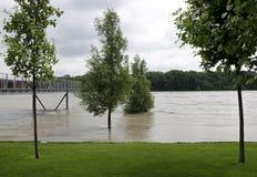 Inondazione su Danubio Fotografia Stock Libera da Diritti