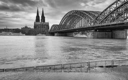Inondazione sul Reno, Colonia, Germania Immagine Stock