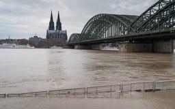 Inondazione sul Reno, Colonia, Germania Fotografie Stock Libere da Diritti