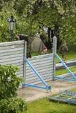 Inondazioni a Praga Fotografia Stock