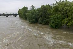 Inondazioni Praga 2013 Immagine Stock
