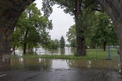 Inondazioni Praga giugno 2013 Immagine Stock