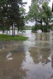 Inondazioni Praga 2013 - isola di Stvanice sommersa Fotografia Stock