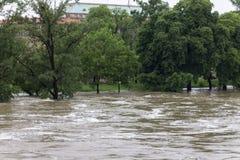 Inondazioni Praga 2013 - isola di Stvanice sotto acqua Fotografia Stock