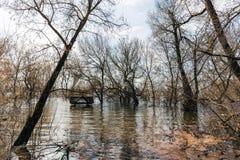 Inondez, des arbres dans l'eau, toit en bois des bâtons chrétiens de belvédère hors de la rivière photo libre de droits