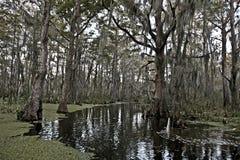 Inondez près de la Nouvelle-Orléans, Louisiane photo libre de droits
