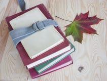 Inpakkend voor universiteit, oude boeken, de herfst. Stock Foto
