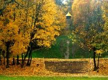 Inpark di autunno Fotografia Stock