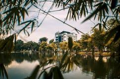 Inquadratura di Bulding con le foglie di bambù Fotografie Stock Libere da Diritti