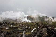 inquinamento ambientale di disboscamento Fotografia Stock Libera da Diritti