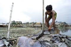 Inquinamento ambientale di fonte di reddito della conceria Immagini Stock
