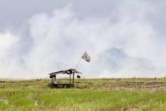 Inquinamento atmosferico, erbaccia dell'ustione dell'agricoltore nel giacimento del riso, Tailandia Fotografia Stock Libera da Diritti