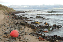 Inquinamento costiero Immagini Stock
