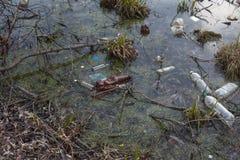 Inquinamento dei corpi dell'acqua Problema ecologico fotografie stock libere da diritti