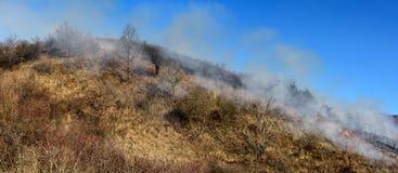 Inquinamento del fumo Fotografia Stock Libera da Diritti