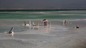 Inquinamento del mar Morto, Ein Bokek, Israele Fotografie Stock Libere da Diritti