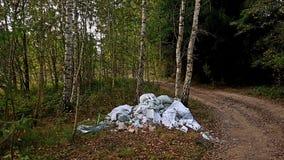 Inquinamento della foresta Fotografie Stock Libere da Diritti
