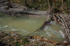 Inquinamento della natura fotografia stock