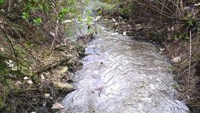 Inquinamento delle acque. Acque reflue. stock footage