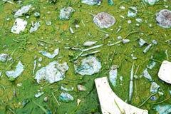 Inquinamento delle acque che ritiene non buon Immagini Stock Libere da Diritti