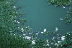 Inquinamento delle acque immagini stock libere da diritti