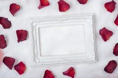 inrama att lägga på snön och de rosa kronbladen Royaltyfri Foto