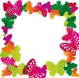 Inrama av fjärilar Royaltyfri Bild
