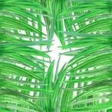 Inrama för vattenfärgbakgrund av nytt grönt gräs vektor illustrationer