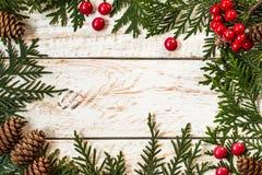 Inrama från jul, träd somfilialer med sörjer kottar royaltyfri fotografi