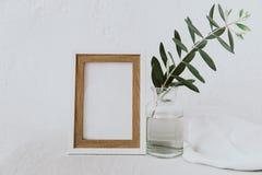 Inrama modellen, olivgrön filial i glasflaskan, kannan, utformad minimalist ren bild royaltyfria bilder