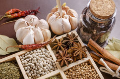 Inramad samling av kryddor Royaltyfria Foton