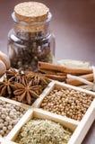 Inramad samling av kryddor Arkivfoto