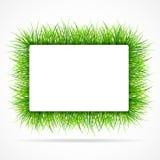 inramnin gräsgreen Royaltyfri Fotografi