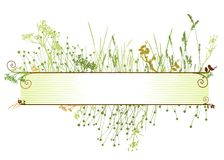 inramnin gräsvektorn Royaltyfri Fotografi