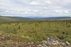 Inre Alaska vildmark Arkivbilder