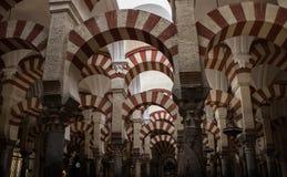 Inre av den berömda moskén - domkyrka av Cordoba royaltyfri bild