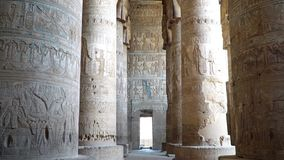 Inre av den Dendera templet eller templet av Hathor egypt Dendera Denderah, är en liten stad i Egypten Dendera tempel arkivfilmer