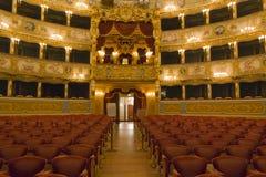 Inre av den LaFenice teatern Royaltyfri Fotografi