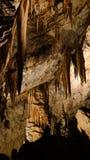 Inre av den Postojna grottan aka Postojnska jama, Slovenien royaltyfri foto
