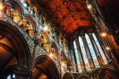 Inre av domkyrkan i Glasgow, Skottland Arkivfoto