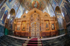 Inre av kyrkan av frälsaren på spillt blod i St-husdjur Arkivbild