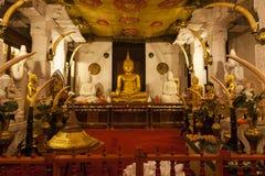 Inre av templet av den sakrala tandreliken (Sri Dalada Maligwa) i centrala Sri Lanka fotografering för bildbyråer