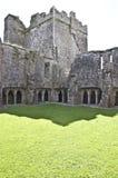Inre borggård på den Bective abbeyen Arkivbilder