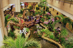 Inre Changi flygplats royaltyfri bild